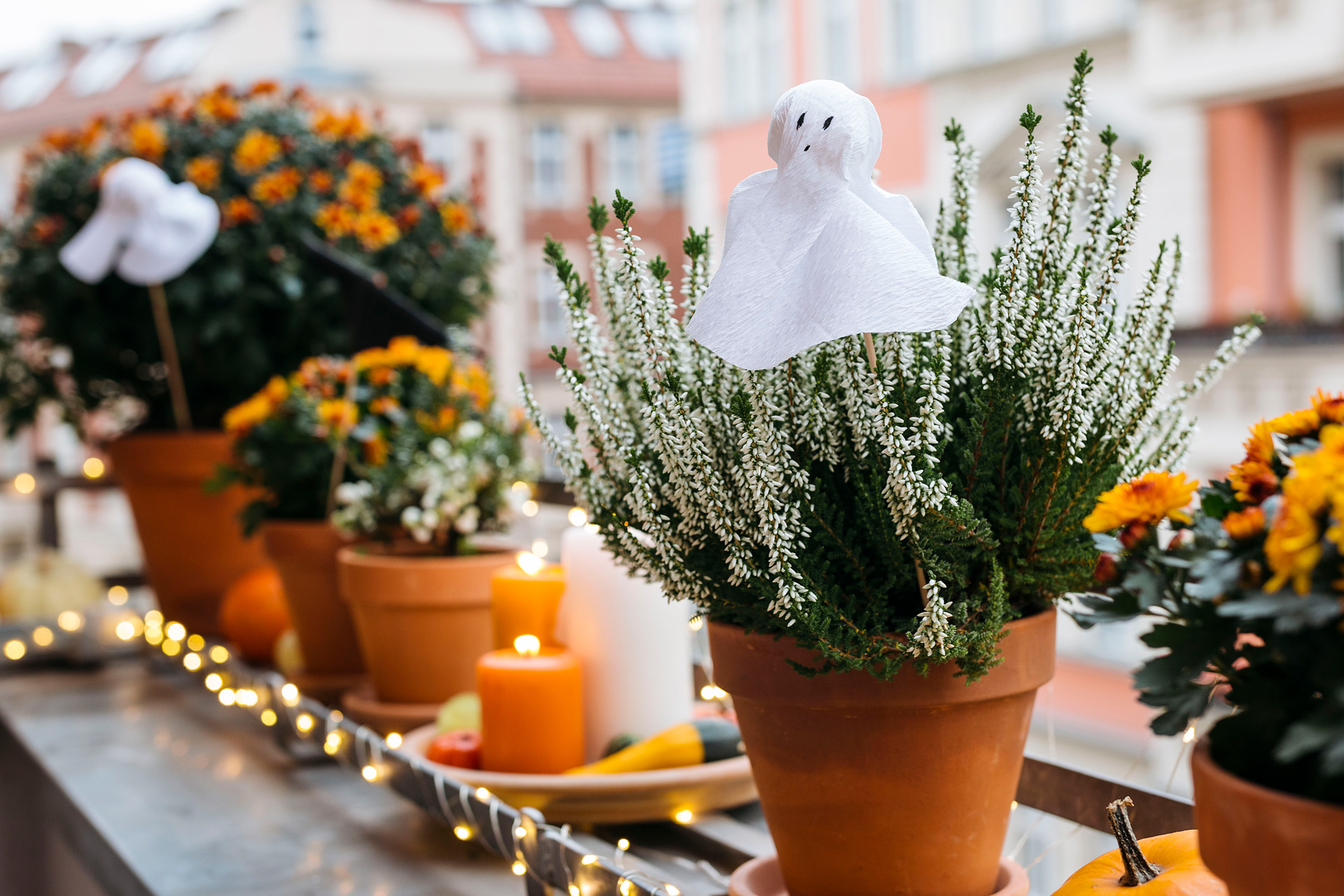 Halloween dekoration mit blumen selber machen you and i diy for Dekoration blumen